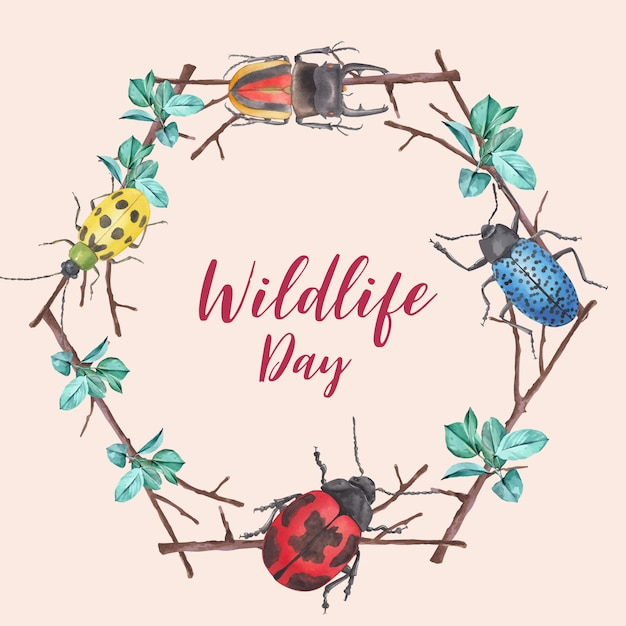 Insect and bird wreath with bug and branch watercolor illustration. Free Vector