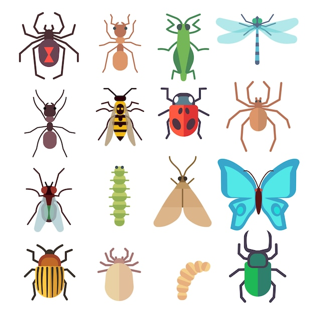 Insect flat icons set Premium Vector