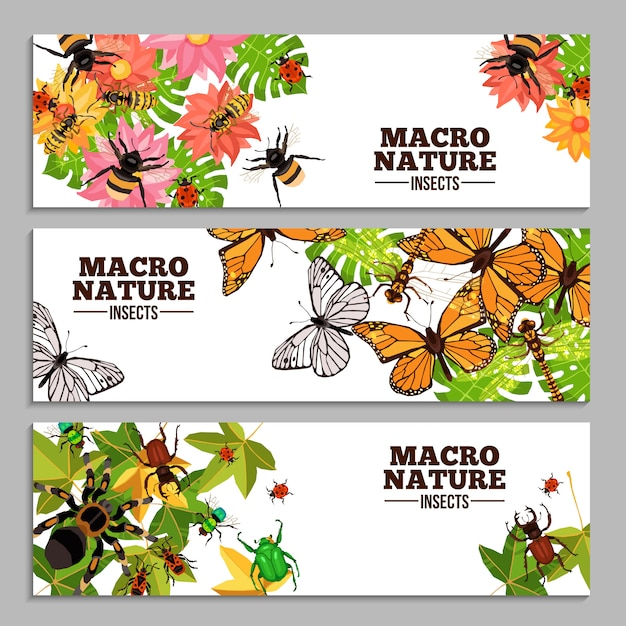 Insects horizontal banners Free Vector