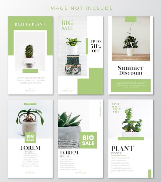 Зеленые растения instagram истории шаблон Premium векторы