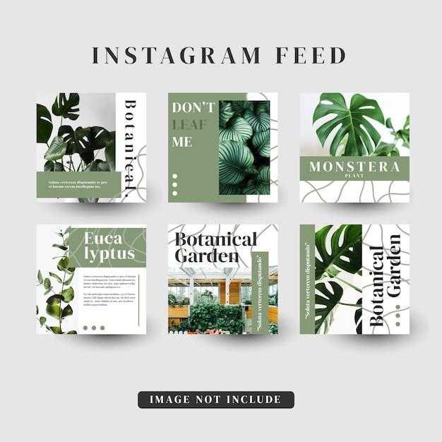 Шаблон рассылки новостей instagram Premium векторы