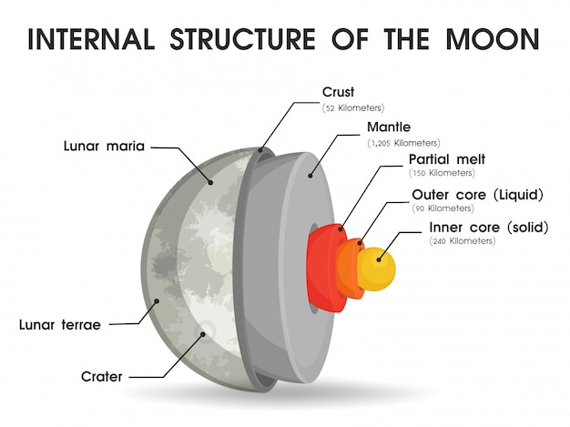 The internal structure of the moon that is divided into layers. Premium Vector