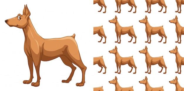 Isolated dog pattern cartoon Premium Vector