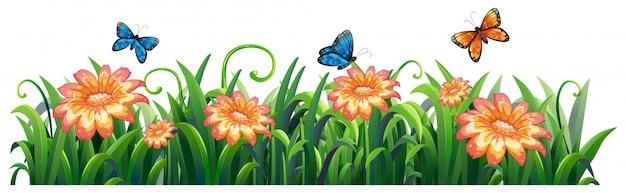 白い背景で隔離された花自然 無料ベクター