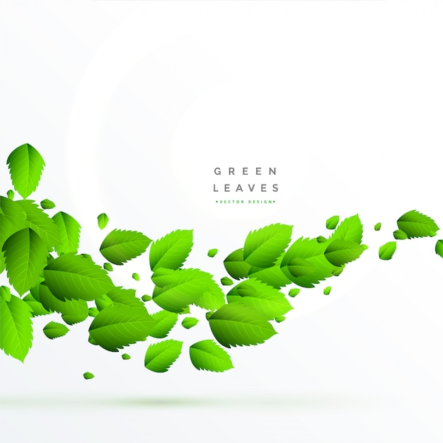 Isolated green leaves floating background Free Vector