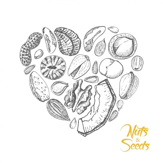 The isolated heart of nuts and seeds Premium Vector