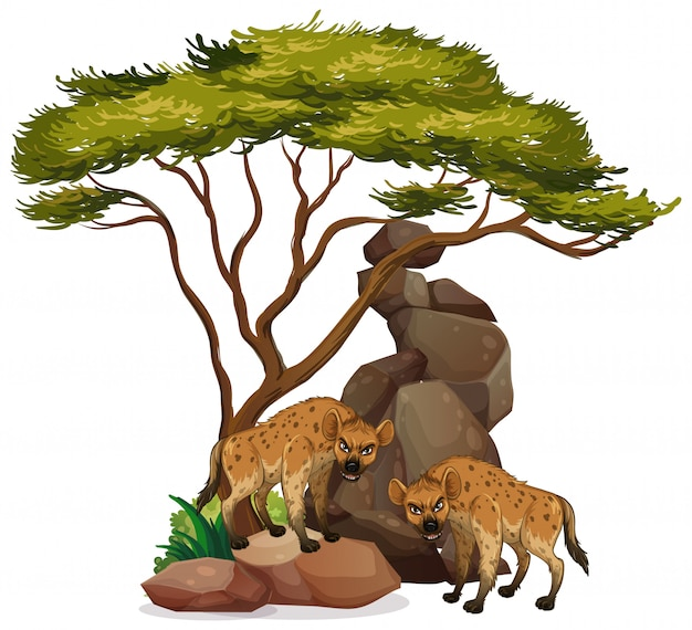 Isolated hyena under the tree Free Vector