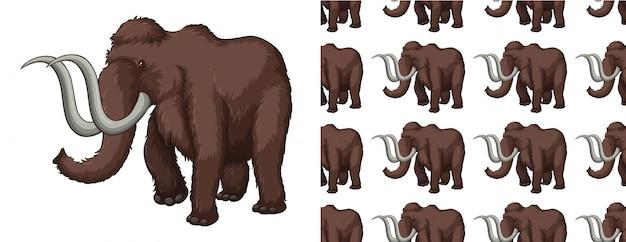 Isolated mammoth pattern cartoon Premium Vector
