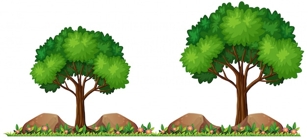 Isolated nature for decor Free Vector