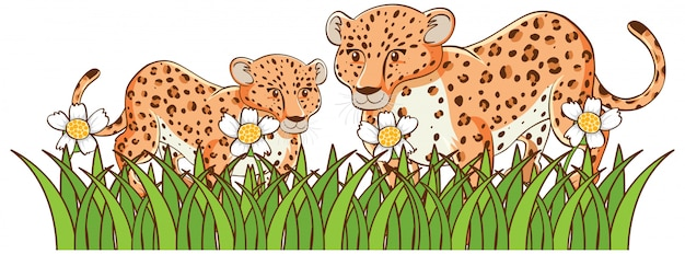 Isolated picture of cheetahs in garden Free Vector