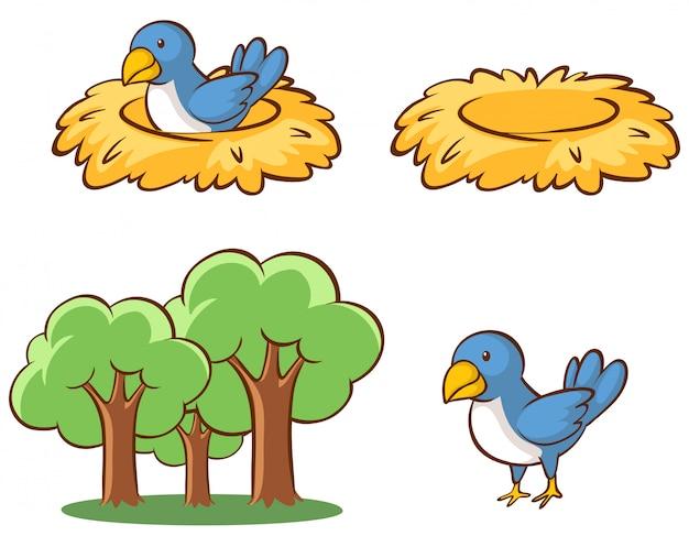 鳥と巣の分離画像 無料ベクター