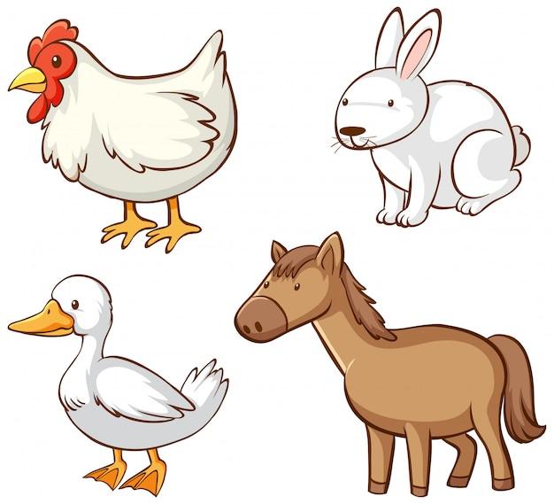家畜の孤立した画像 無料ベクター