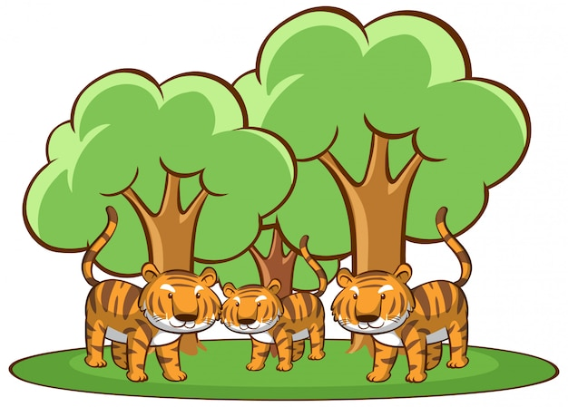 Isolated picture of tigers in forest Free Vector