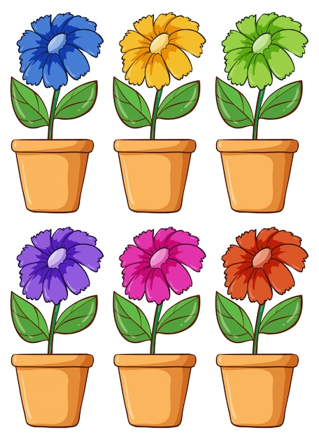 Isolated set of flower in different colors Free Vector