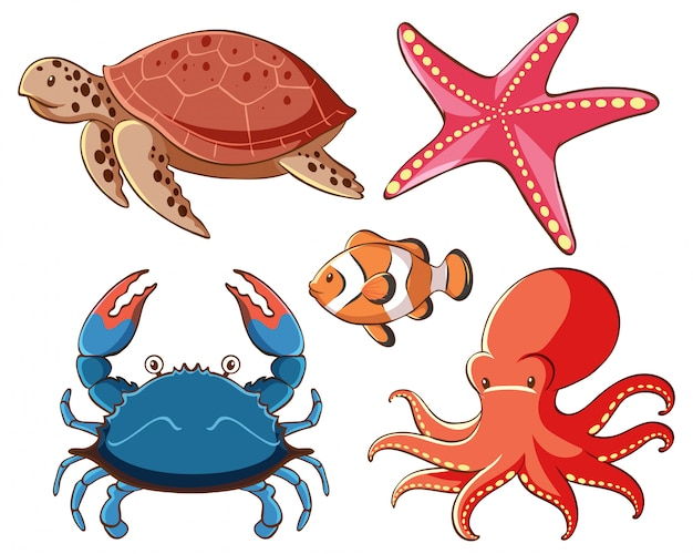 Isolated set of sea animals on white background Free Vector