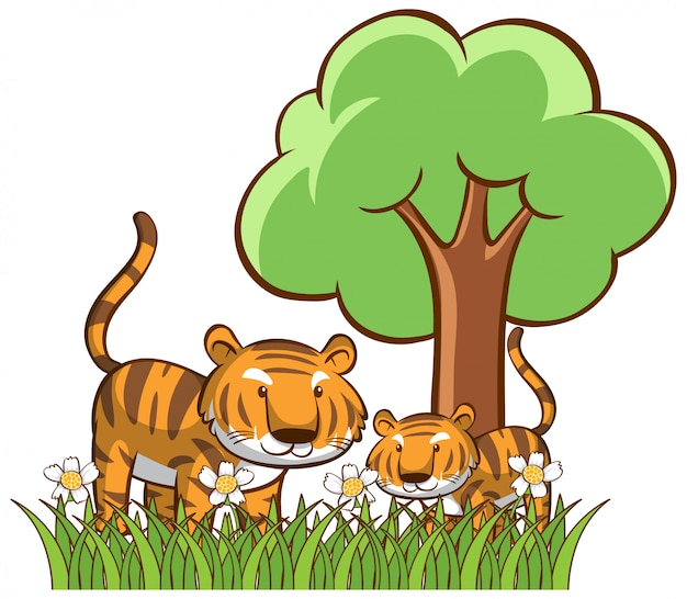Isolated tigers in the garden Free Vector