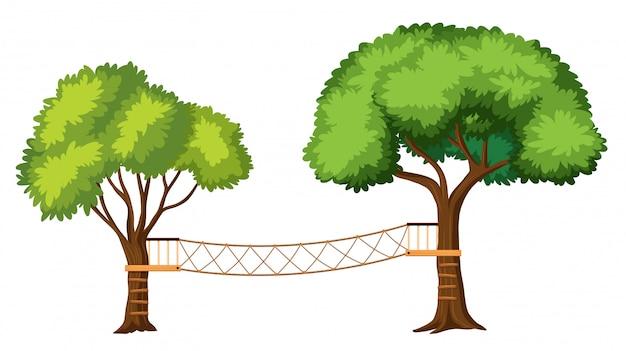 Isolated tree adventure activities Premium Vector