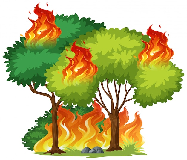 Isolated tree on fire Premium Vector