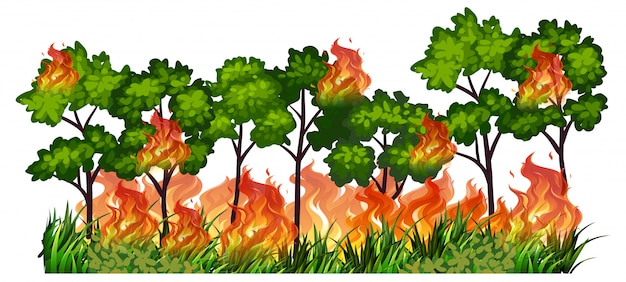 Isolated tree nature fire Free Vector