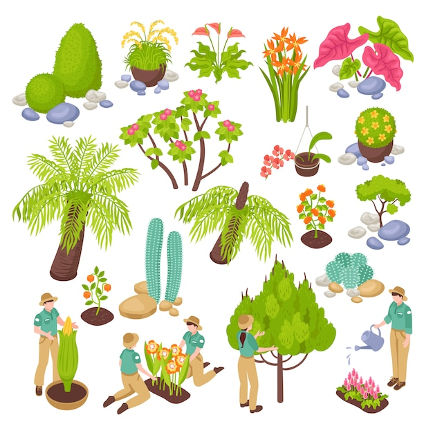 Isometric botanical garden greenhouse set with isolated s of various plants trees and flowers with people Free Vector