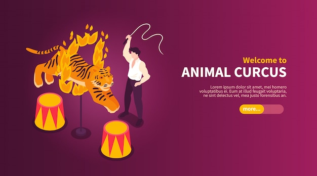 Gli artisti isometrici del circo mostrano l'insegna orizzontale con le immagini di domatore e tigre dell'animale selvatico con l'illustrazione di vettore del testo Vettore gratuito