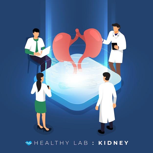Лаборатория изометрической концепции с помощью медицинского анализа почек. научное образование в команде. иллюстрировать. Premium векторы