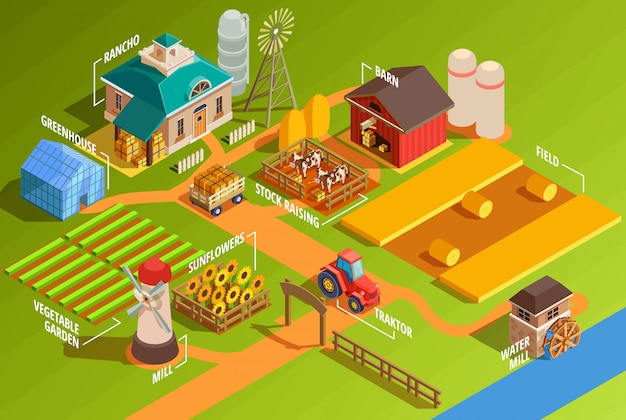 Isometric farm infographics Free Vector