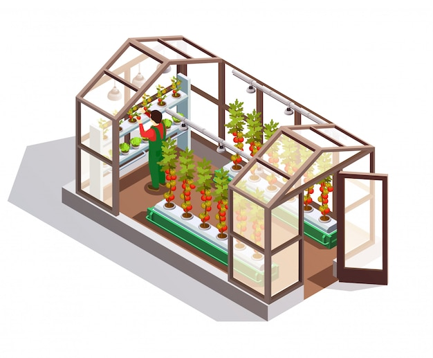 Isometric greenhouse with glass walls Free Vector