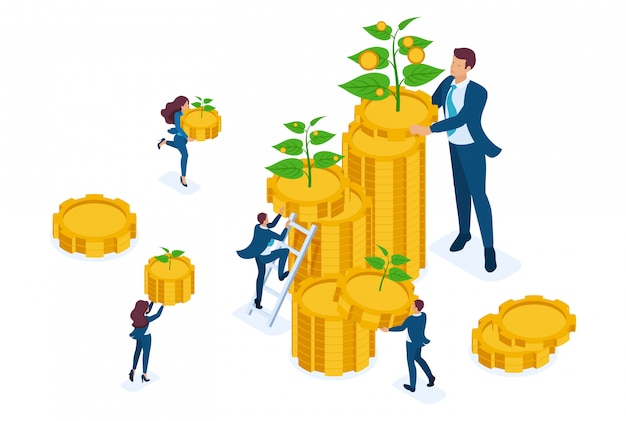 Isometric investment solutions for income growth, small shoots grow into large. Premium Vector