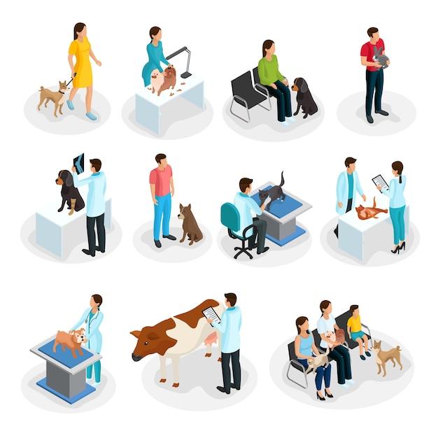 Изометрические ветеринарные клиники набор людей со своими домашними животными приходят к ветеринарам для лечения изолированы Бесплатные векторы