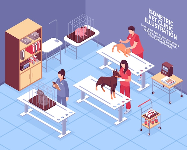 Isometric veterinary composition Free Vector