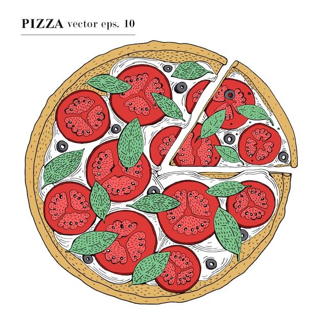 Italian pizza margarita hand drawn vector illustration. can be use for pizzeria, cafe, shop, restaurant. Premium Vector