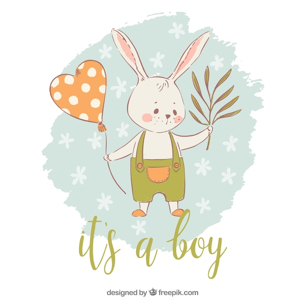 Its a boy background with rabbit Free Vector