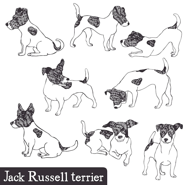 Jack russell terrier set Free Vector