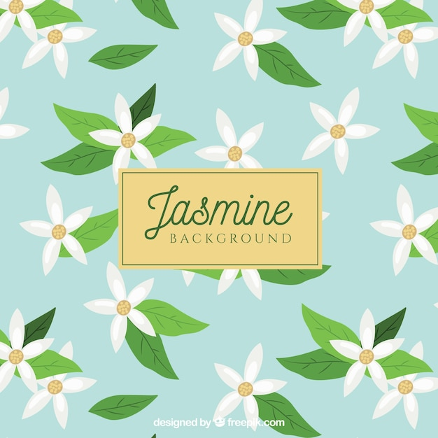 Jasmine Background With White Flowers Vector Free Download