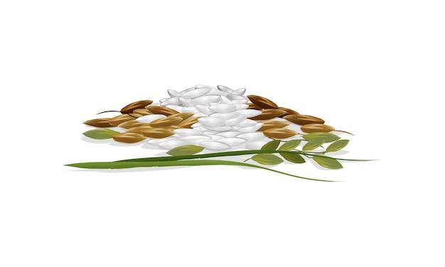 Jasmine rice Premium Vector