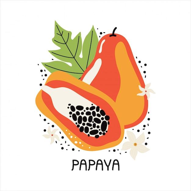 Сочная оранжевая папайя с листьями и цветами. нарисованный рукой кусок тропического плодоовощ с мясом и семенами. плоская иллюстрация на белом фоне. рукописный текст папайи. каракули плоды джунглей Premium векторы
