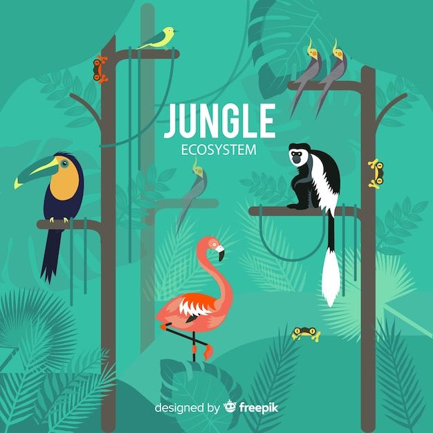Jungle ecosystem background Free Vector