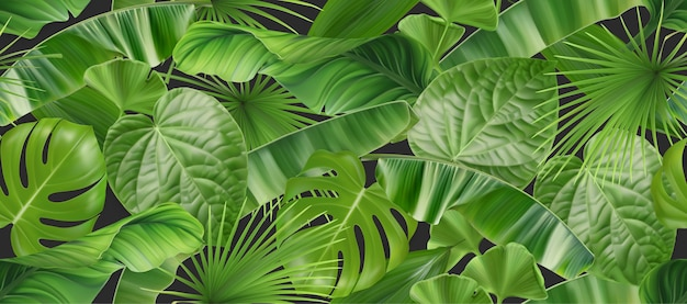 Jungle foliage seamless pattern, 3d vector realistic background Premium Vector