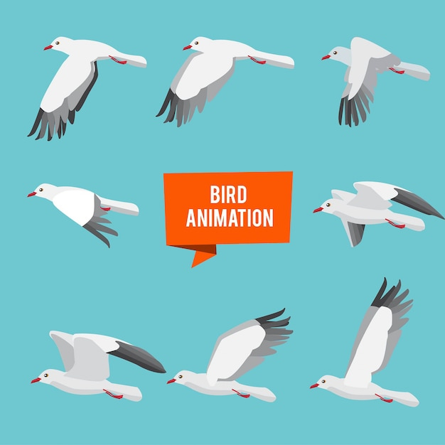 Key frames of animation flying bird Premium Vector