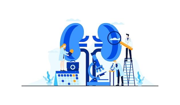 Kidney disease  flat illustration doctor's research for treatment concept design Premium Vector