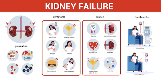 Kidney failure infographic. symptoms, causes, prevention and treatment. idea of medical treatment. urology, internal human organ. healthy body. Premium Vector