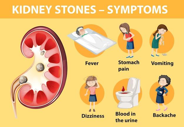 Симптомы камней в почках мультяшном стиле инфографики Premium векторы