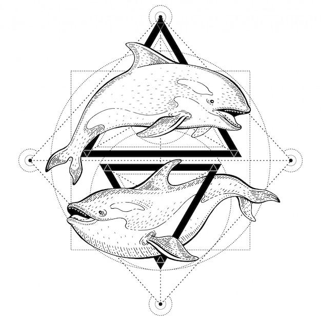 Тату косаток косаток. геометрическая векторная иллюстрация с треугольниками и морскими животными. эскиз логотипа в винтажном стиле битник. Premium векторы