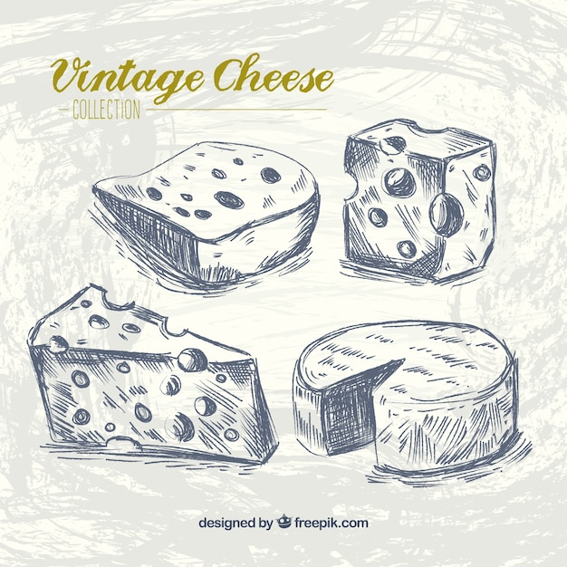 Kind of cheese in retro style Free Vector