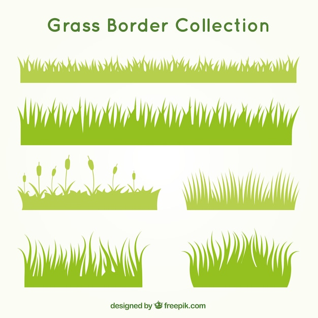 Kinds of grass set Free Vector