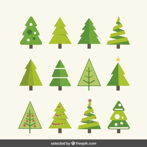 Kinds of fir tree collection Free Vector