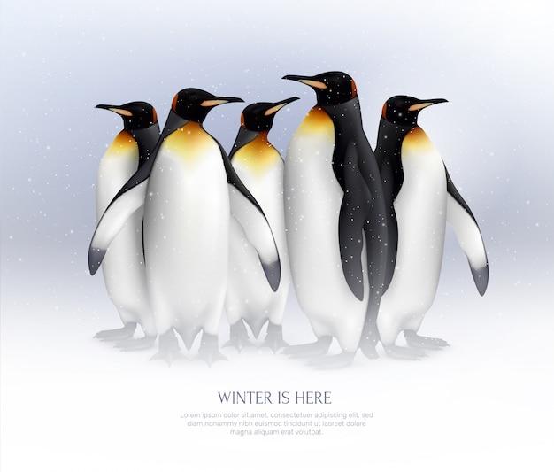 素晴らしい冬の休暇のアイデアのために現実的な雪の環境構成でキングペンギンのコロニー 無料ベクター