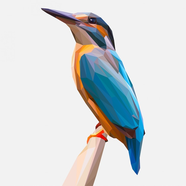 Kingfisher on the branch illustration Premium Vector