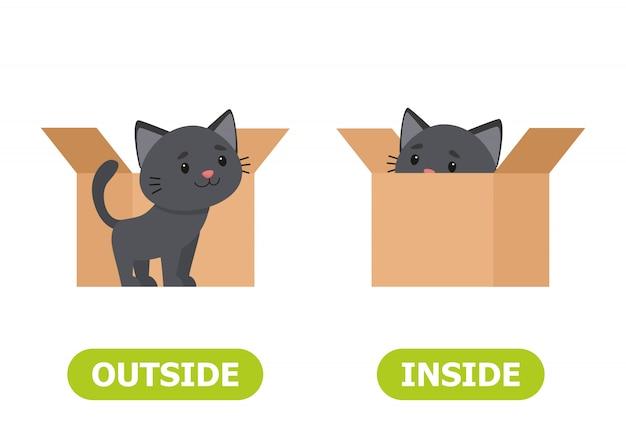 Kitten inside the box and outside Premium Vector